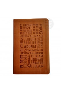 NIV NAMES OF GOD BIBLE IL TAN