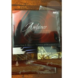 Ambience Instrumenta moods for worship